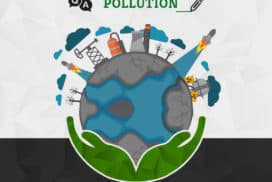 Pollution related Questions | GreenSutra | India