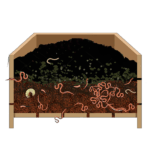 Vermicomposting Services by GreenSutra